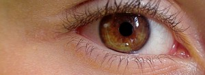 eye-419646_1280